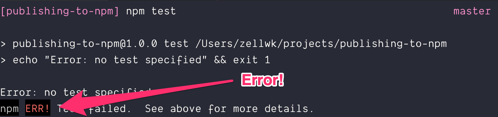npm test results in an error